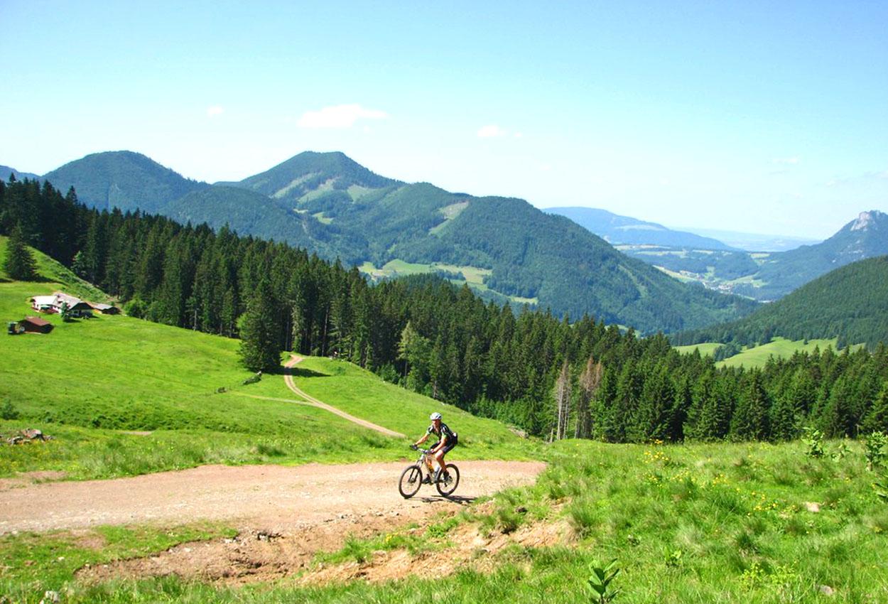 Mountainbiken Faistenau